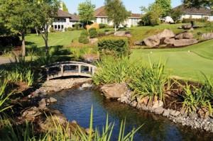 estanque en campo de golf